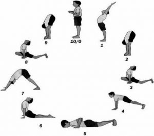 how effective is sun salutation in improving muscle